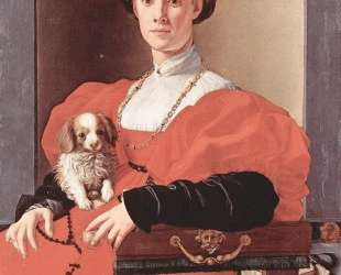 Portrait of a lady in red dress — Джакопо Понтормо
