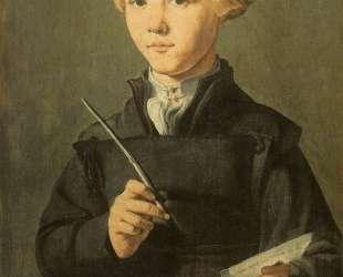 Portrait of a young scholar — Мартен ван Хемскерк