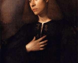 Портрет юноши (Антонио Броккардо) — Джорджоне