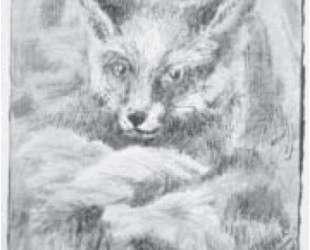 Profit fox — Николай Рерих