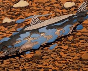 Redding Salmon — Нил Уэлливер