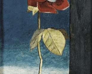Роза и горошек — Люсьен Фрейд