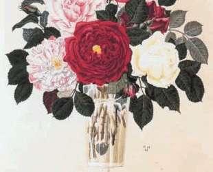 Roses — Георгий Нарбут