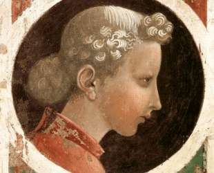 Медальон с головой — Паоло Уччелло