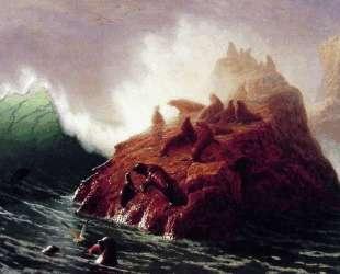 Seal Rock — Альберт Бирштадт