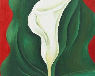 Single Calla Lily (Red) — Джорджия О'Киф