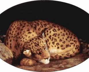 Sleeping Leopard — Джордж Стаббс