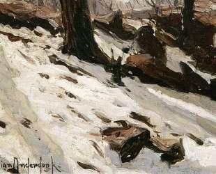 Snow near the Cave, Central Park, New York — Роберт Джулиан Ондердонк