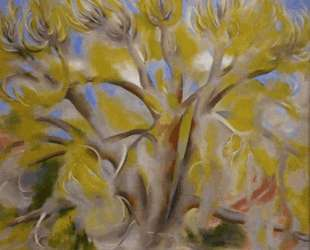 Spring Tree No. 1 — Джорджия О'Киф