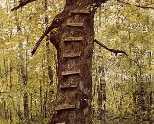 Steps — Джейми Уайет