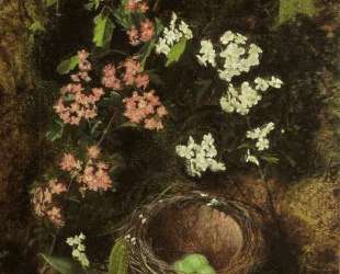 Still Life of Birds Nest with Primulas and Blossom — Джон Эткинсон Гримшоу