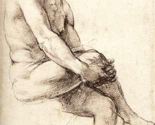 Study for Adam — Рафаэль Санти