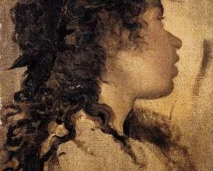 Study for the head of Apollo — Диего Веласкес