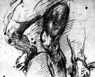 Study of legs — Тициан