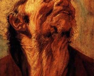 Study of the head of Abraham Grapheus — Якоб Йорданс