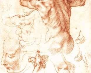 Study to The Libyan Sibyl — Микеланджело