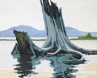 Stumps and Allagash — Нил Уэлливер