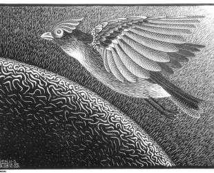 The 1st Day of the Creation — Мауриц Корнелис Эшер