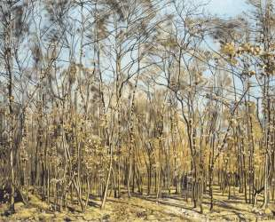The Beech Forest — Фердинанд Ходлер