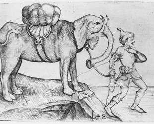 The elephant and his trainer — Мартин Шонгауэр