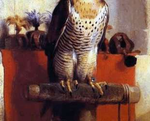 The Falcon — Эдвин Генри Ландсир
