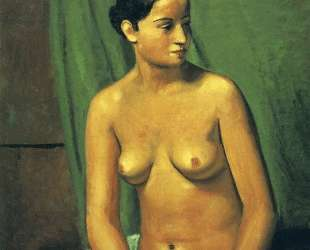 The female nude in front of green hanging — Андре Дерен