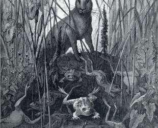 Заяц и лягушки — Гюстав Доре