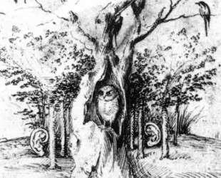 Слышащий лес и видящее поле — Иероним Босх
