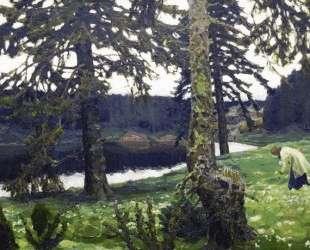 The Lake — Виктор Васнецов