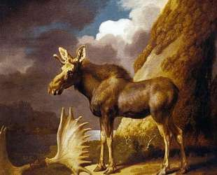 The Moose — Джордж Стаббс