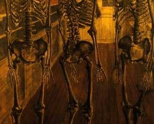 Музей естественной истории — Поль Дельво