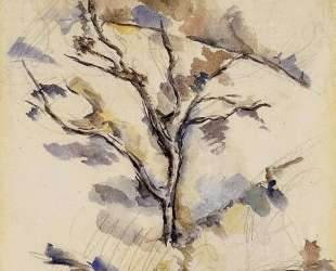 The Oak — Поль Сезанн