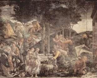 Юный Моисей — Сандро Ботичелли