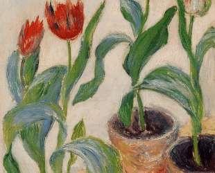 Три горшка с тюльпанами — Клод Моне