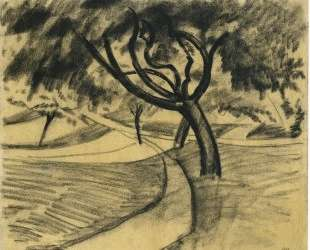 Trees and fields — Август Маке