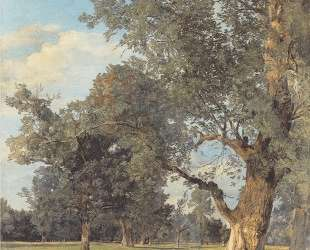 Trees in the Prater with seated figures — Фердинанд Георг Вальдмюллер