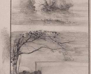 Деревья у воды. Ветви деревьев — Алексей Саврасов