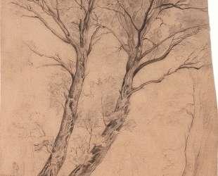 Trees — Эрнст Людвиг Кирхнер