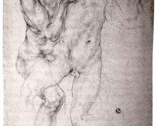 Two nudes — Джакопо Понтормо