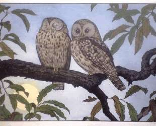 Two Owls — Тоси Ёсида