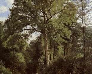 Виль д'Авре. Опушка леса с пастушкой — Камиль Коро