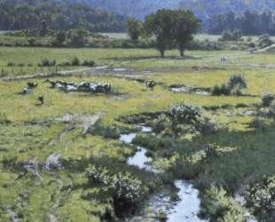 Walpole Meadow — Ричард Уитни