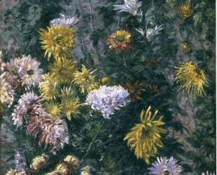 White and Yellow Chrysanthemums — Гюстав Кайботт