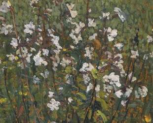 White Flowers in the Field — Анри Мартен