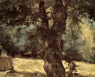 Woman Seated Beneath a Tree — Гюстав Кайботт