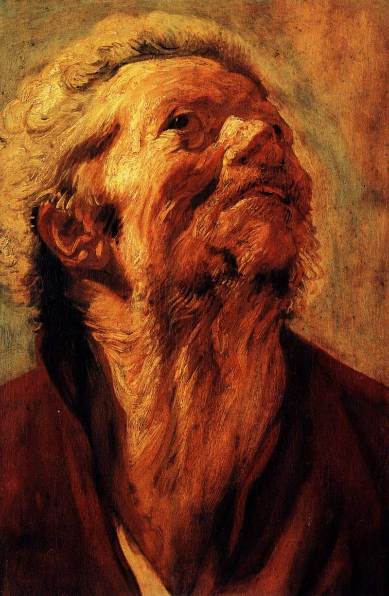 Study of the head of Abraham Grapheus — Якоб Йорданс